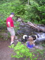 family activity throwing sticks into river, laughing at wading dog
