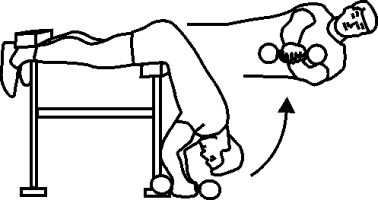 Seated Ball Oblique Twists